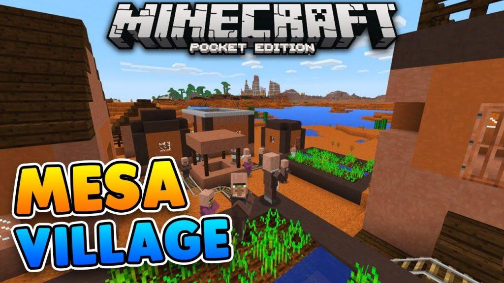 Mesa Village Seed