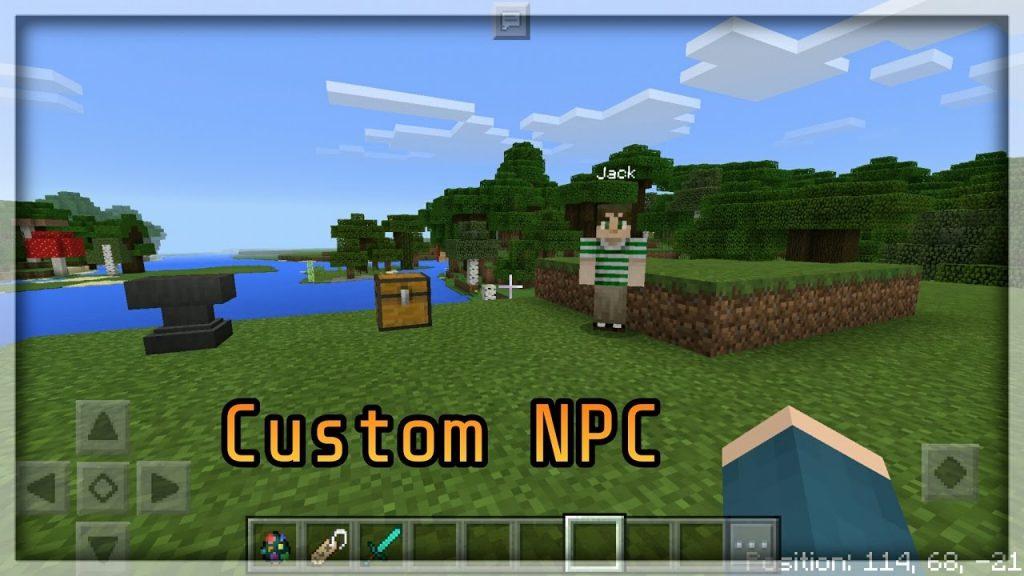 Vladu 11's Custom NPC Mod