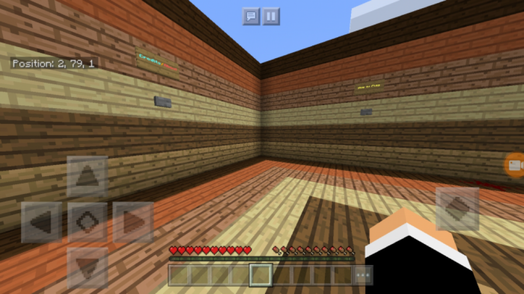 PAG Disappearing Gravel Map | Minecraft PE Maps