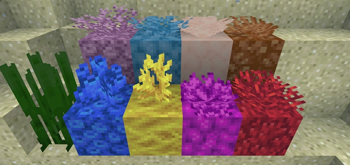 Corals Texture Pack