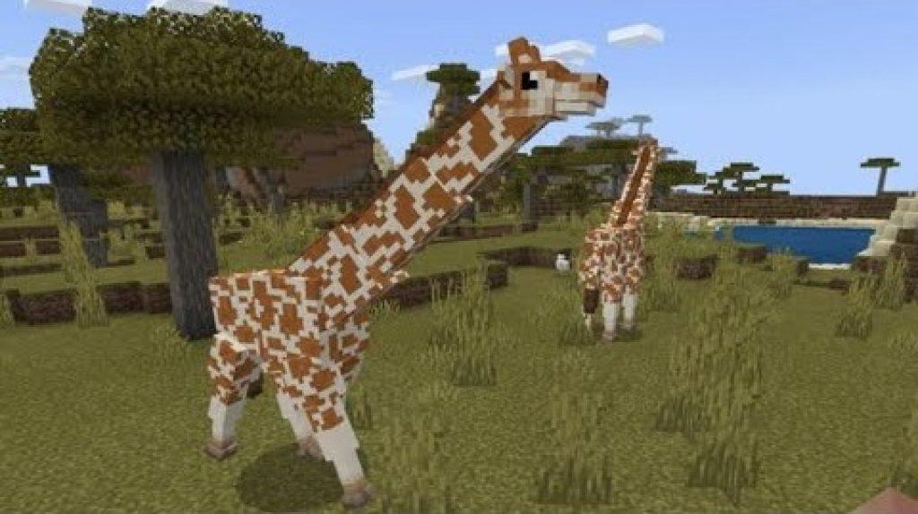 How to breed animals in minecraft pe | Minecraft Animals: 13 Steps
