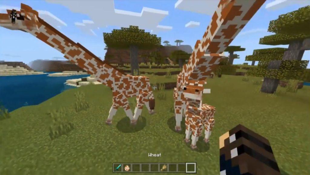 Giraffes Addon