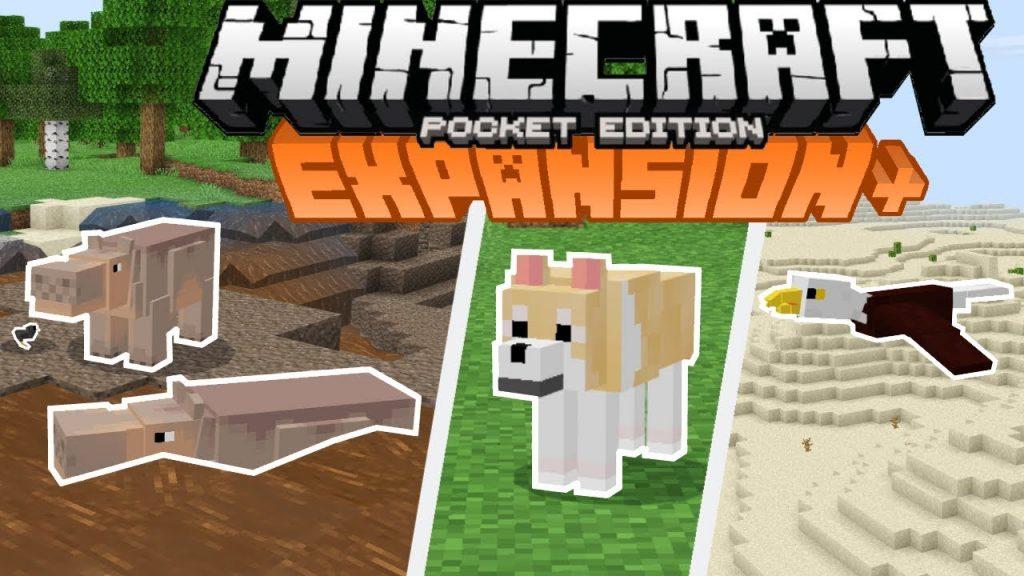 Expansion+ Addon