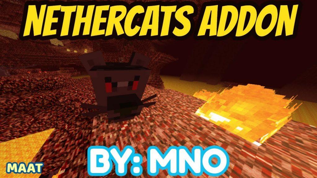 Nethercats Addon